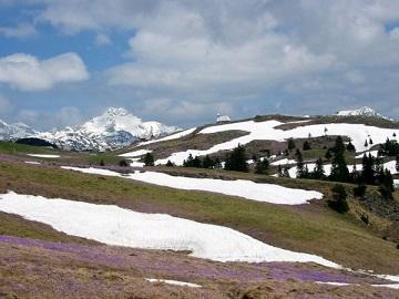 Velika planina (2004)